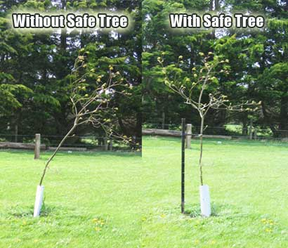withSafeTree